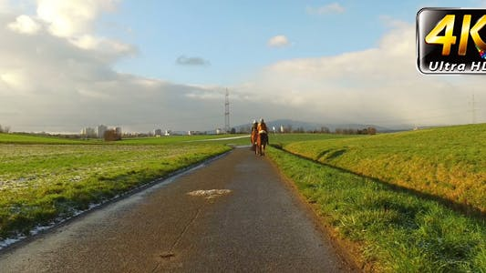 Thumbnail for Riding Horse in Green Field and Sunny Dreamy Cloudy Day