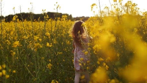 Thumbnail for Girl Running Cross The Field At Sunset.