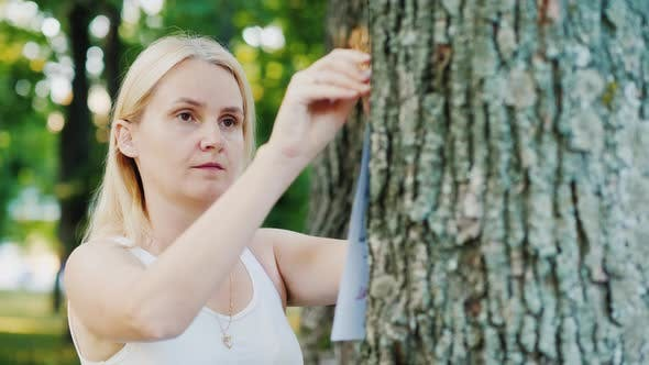 Thumbnail for Young Woman Attaches an Ad To a Tree in the Park