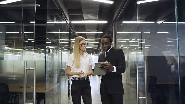 Thumbnail for Business People Standing in Glass Office Hall and Discussing Aboult Business Project
