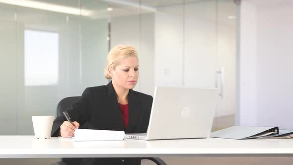 Thumbnail for Executive businesswoman working with laptop at desk