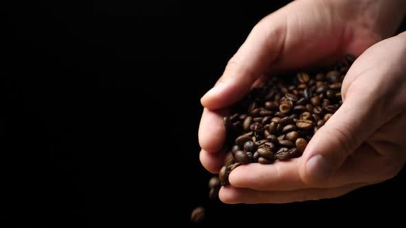 Thumbnail for Roasted Coffee Beans Group Falling Down