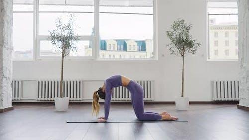 Yoga Woman Practicing Yoga Asanas on All Fours