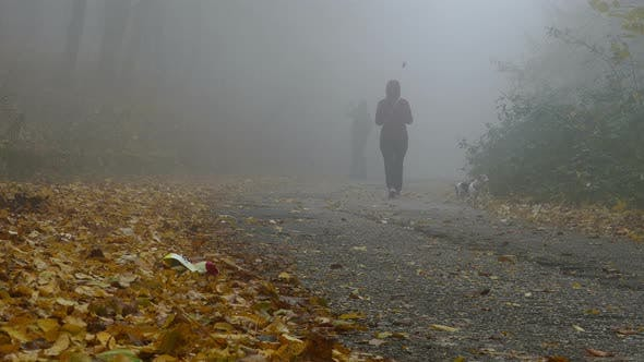 Thumbnail for Family Walk In The Park During Autumn Misty Day
