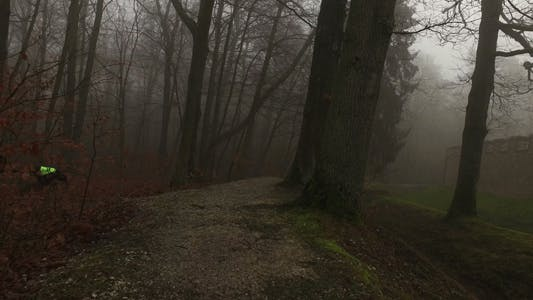Thumbnail for Old Historical Ancient Castle Walls and Forest in Misty Foggy Day 6