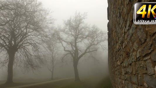 Thumbnail for Old Historical Ancient Castle Walls and Forest in Misty Foggy Day 9