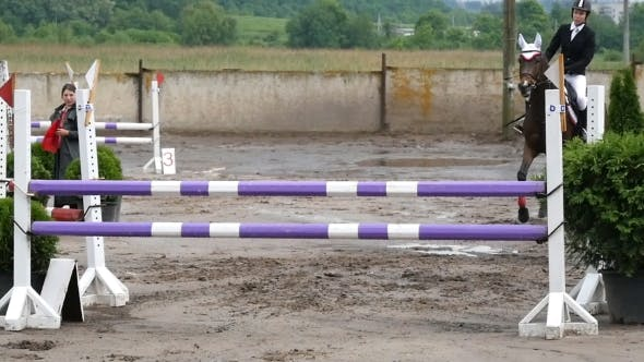 Thumbnail for Horse Is Galloping And Jumping Through a Barrier
