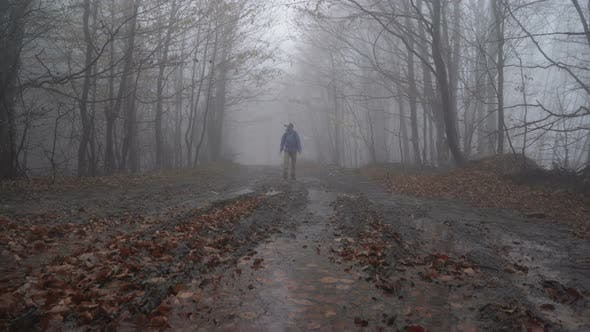 Man in Virtual Reality in Spooky Foggy Forest with VR Glasses. Virtual Reality Gaming Concept
