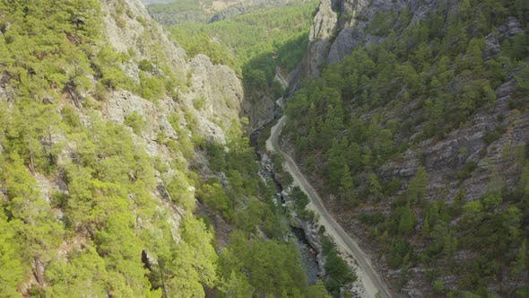 Steep Cliffs and Gorge with Pine Forest