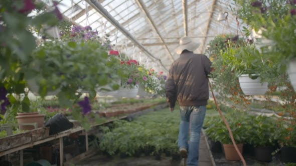 Thumbnail for Worker Watering Flowers In