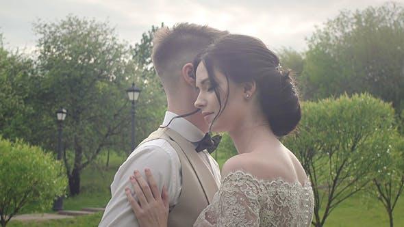 Thumbnail for Romantic Embrace