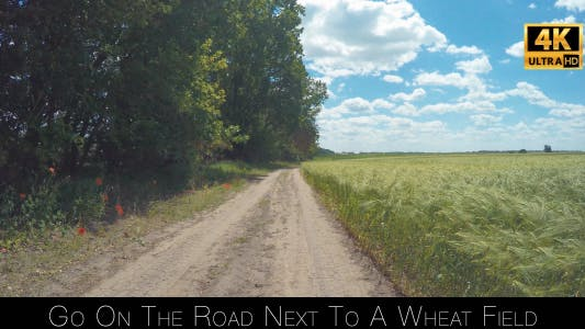 Thumbnail for Go On The Road Next To A Wheat Field