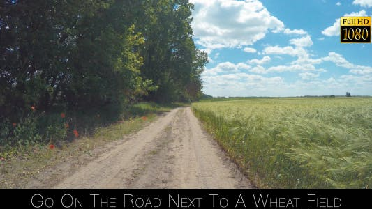 Cover Image for Go On The Road Next To A Wheat Field