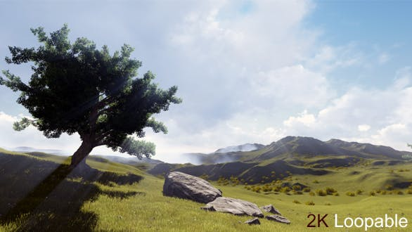 Thumbnail for The Lonely Tree