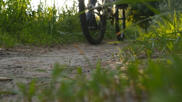 Thumbnail for Two Young Man Riding Bikes Through Path On The Field.