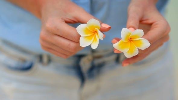 Thumbnail for Beautiful Frangipani Flowers Background Turquoise Sea