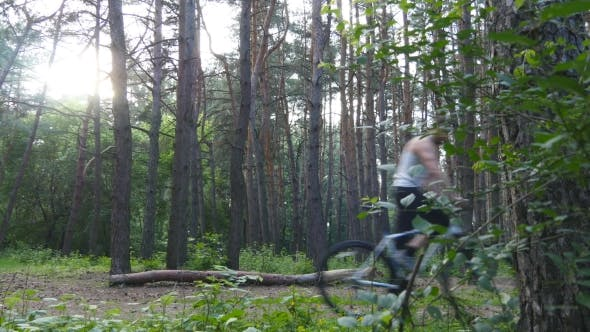 Thumbnail for Two Bikers Riding a Bike On Pathway In Forest. Mountain Bikers Passing By The Camera In a Green