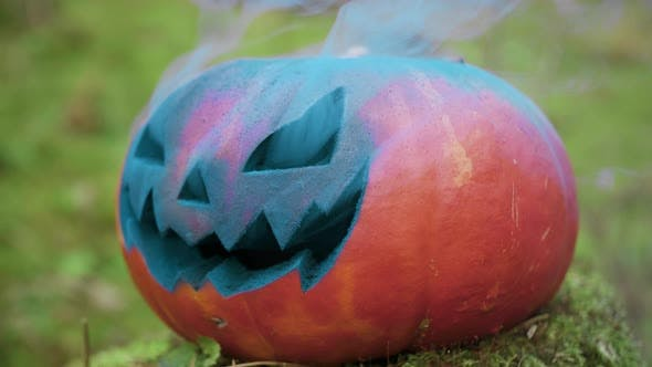 Halloween Pumpkin with Colored Smoke in the Autumn Forest