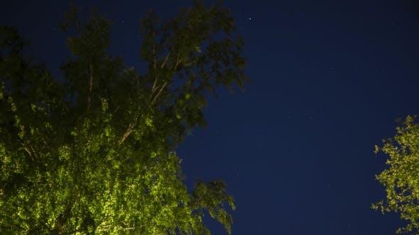 Thumbnail for Starry Summer Sky Night