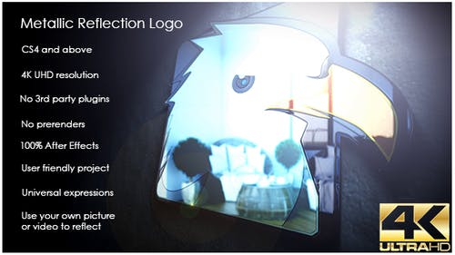 Metallic Reflection Logo