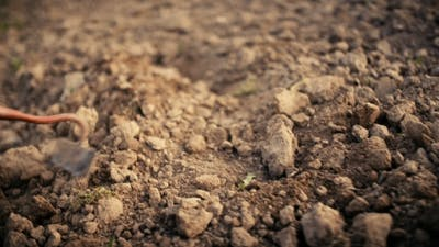 Farmer Using Hoe On Dirt At Farm