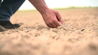 Seeding, Planting
