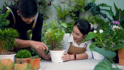 Couple gardener using spoon on plant in the garden