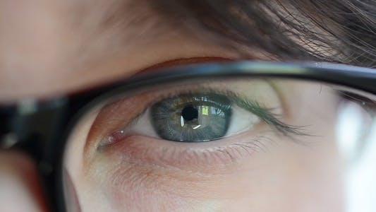 Thumbnail for Eyes 38