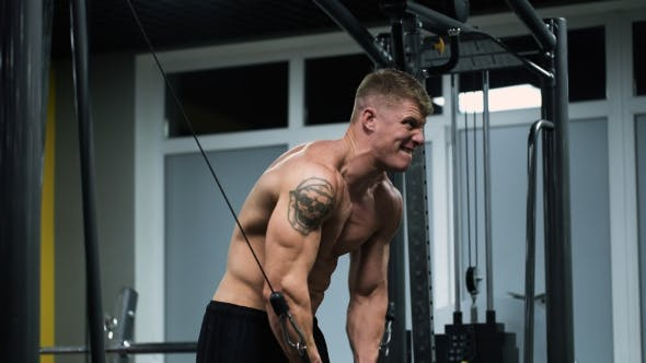 Thumbnail for Muscular Athlete In The Gym, Doing Heavy Exercise