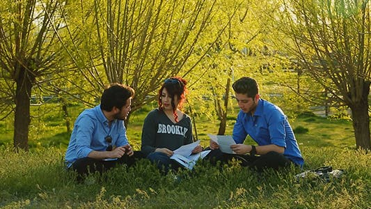 Cover Image for Students Studying In The Park