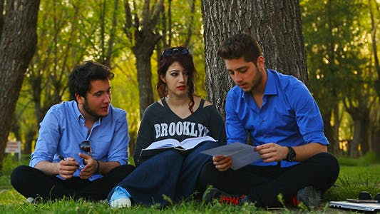 Cover Image for Studying on the Grass