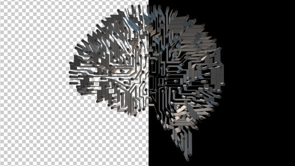 Thumbnail for 3D Brain Circuits