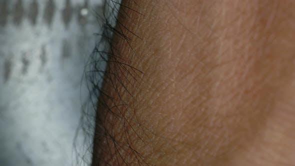 Thumbnail for Human Skin