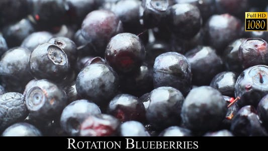 Thumbnail for Rotation Blueberries 2