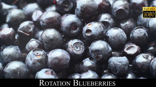 Cover Image for Rotation Blueberries 3