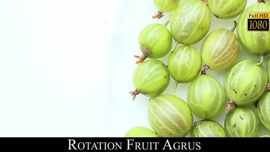Cover Image for Rotation Fruit Agrus