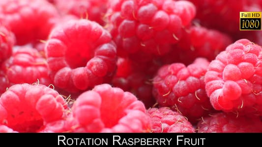 Thumbnail for Rotation Raspberry Fruit 3