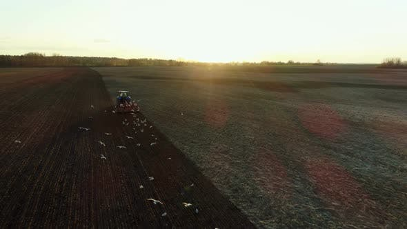 Thumbnail for Farmer In Tractor Working On Fields During Sunset