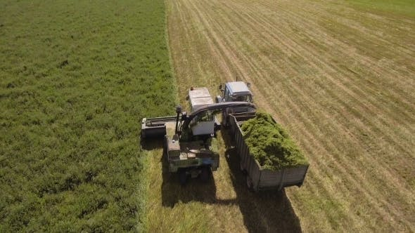 Thumbnail for Aerial View. Combine Harvester Cutting Field