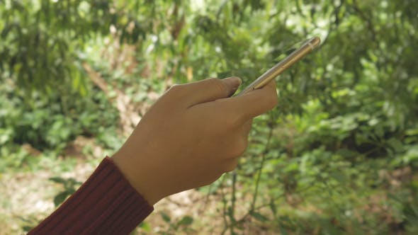 Cover Image for Using Smartphone in Forest