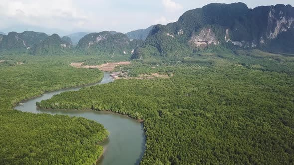 Thumbnail for Aerial of River in Mangrove Forest and Mountains