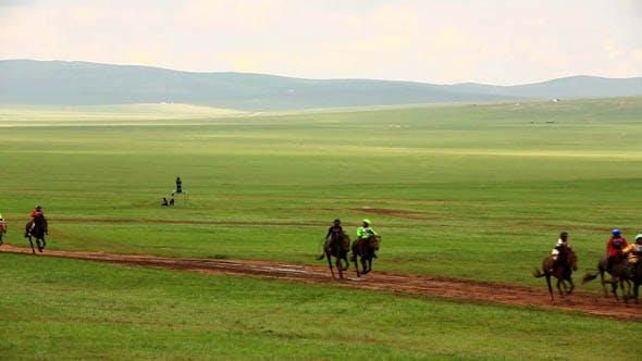 Thumbnail for Naadam Festival, Horse Race, Mongolia 3