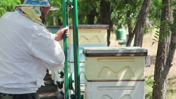 The Work Of The Beekeeper. Rearrange The Hive On An Apiary.
