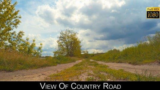Cover Image for View Of Country Road