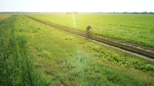 Thumbnail for AERIAL: Young Man Cycling On Bicycle At Rural Road Through Green And Yellow Field.