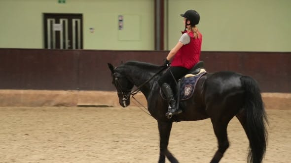 Thumbnail for Girl Jockey Riding a Black Horse