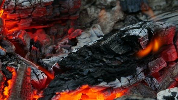 Coals In Campfire