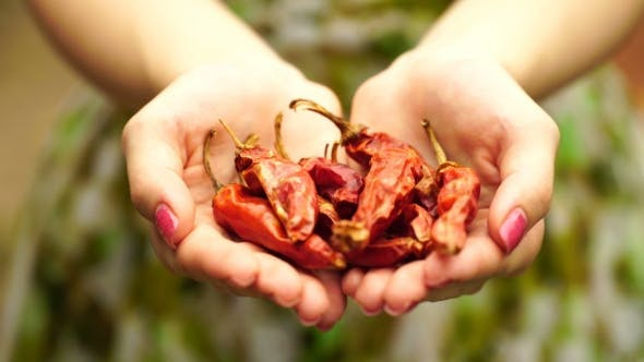 Thumbnail for Footage Woman Holding a Dried Red Peppers
