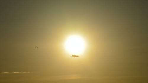 Airplane Arriving at Sunset