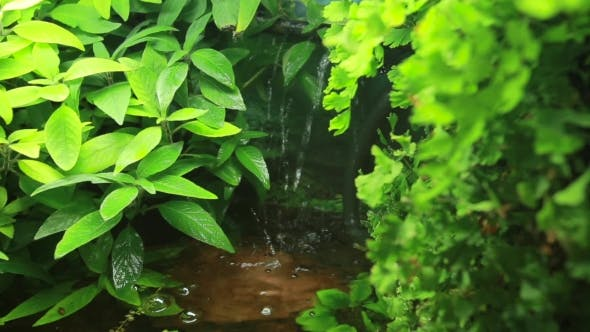 Thumbnail for Artificial Waterfall In Tropical City Garden